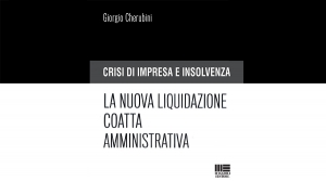 "Book preview: ""Business crisis and insolvency. The new administrative compulsory liquidation."""